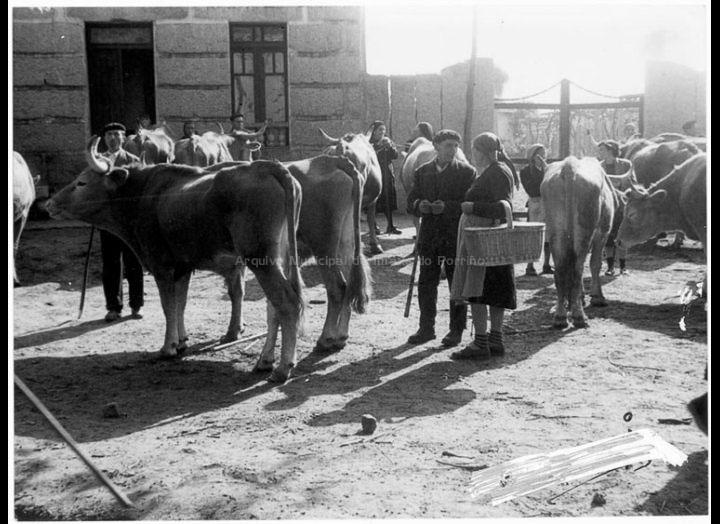 Un día de feira no Porriño. Campo da Feira. / Agustín Bermejo [1955 - 1970 (?)] / PROCEDENCIA: Fondo Juan Manuel Areal Grova