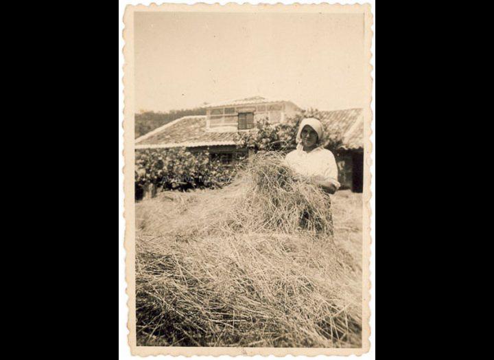 Mallando a herba. / Autor descoñecido [1940-1960 (?)] / PROCEDENCIA: Recollida Budiño. Album familiar Benita Ramilo Pichel