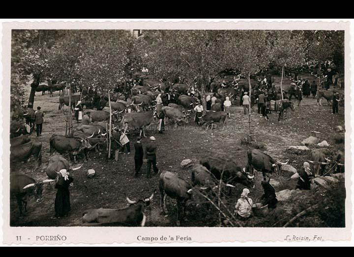 Campo da feira do Porriño. Tarxeta Postal. / L. Roisin [1929-1930 (?)] / PROCEDENCIA: Recollida O Porriño. Album familiar Josefa Sío Casales