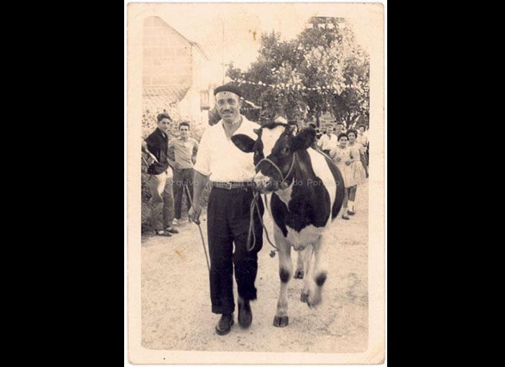 agricultura-e-ganderia_p_0015