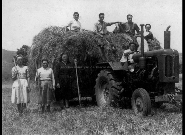 agricultura-e-ganderia_p_0027