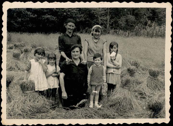 agricultura-e-ganderia_p_0030
