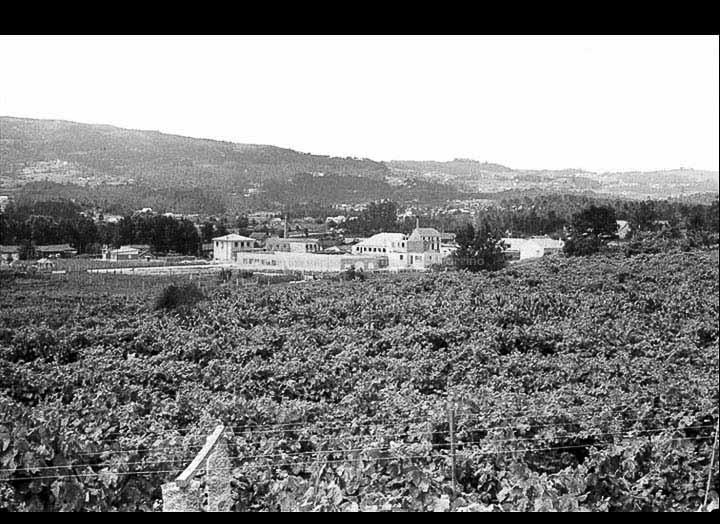 Vista desde o barrio da Malladoura cara ao barrio dos Currás. / Foto Magno [1954-1970] / PROCEDENCIA: Arquivo Magno