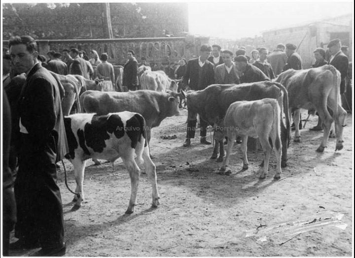 Un día de feira no Porriño. Campo da feira. / Agustín Bermejo [1955 – 1970 (?)] / PROCEDENCIA: Fondo Juan Manuel Areal Grova