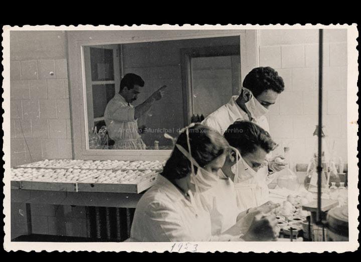 Laboratorios Zeltia S. A. Inoculando ovos. / Autor descoñecido [Ca. 1953] / PROCEDENCIA: Recollida O Porriño. Álbum familiar de Mª Paz Moreira Adán
