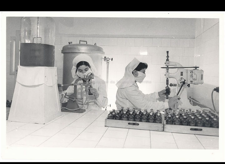 Zeltia S. A.  Traballadoras na sección de embotellado. / Autor descoñecido [1954-1956] / PROCEDENCIA: Recollida O Porriño. Álbum familiar de Carmen Castaño Parra