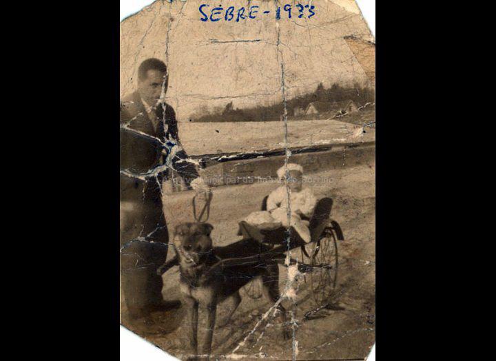 Cuquín montado nun carriño que arrastraba a súa cadela. / Autor descoñecido [1933] / PROCEDENCIA: Recollida O Porriño. Album familiar de Joaquín Diz Tato