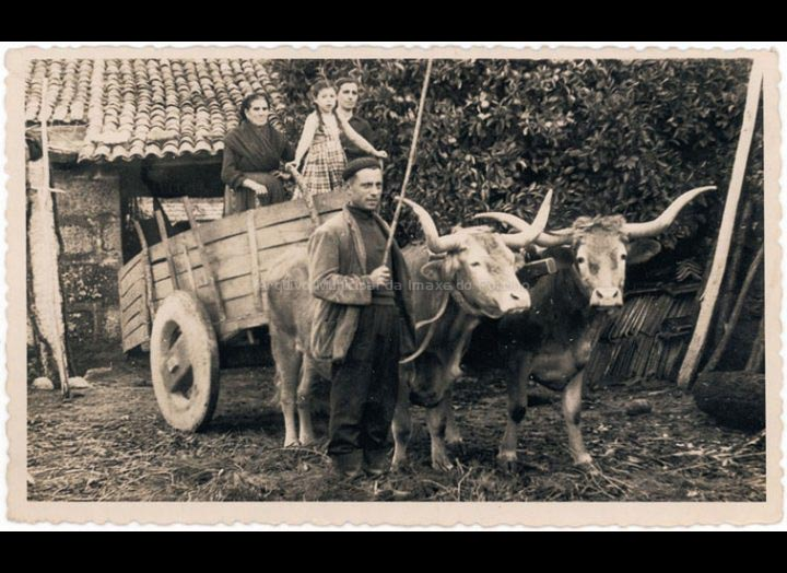 Familia Vila co carro de bois para realizar faenas agrícolas. / Foto Balbino Ramírez (Salceda de Caselas) [1940 – 1960 (?)] / PROCEDENCIA: Recollida Budiño. Album familiar de Mª Carmen Lemos Domínguez